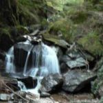 Puck's Glen near Dunoon